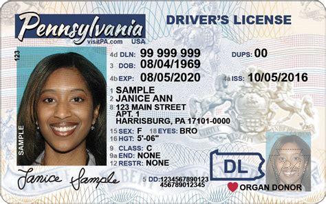 new driver license design