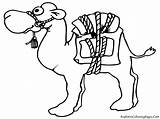 Camel Coloring Pages Cartoon Funny Mewarnai Gambar Unta sketch template