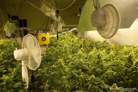 installation chambre de culture la ventilación en el cultivo de la marihuana
