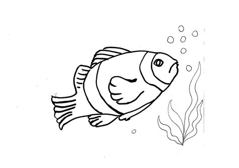 pesce da colorare per bambini disegno di pesce da colorare disegni da colorare e