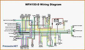 31 Chinese Atv Wiring Diagram 50cc