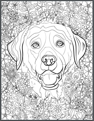 de stress  dogs downloadable  page coloring book  adults  love dogs print