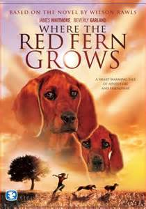 Image result for where the red fern grows pictures