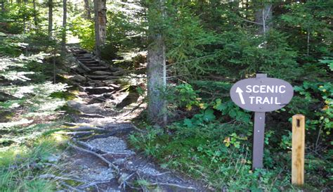 best hiking near me walking and hiking trails near me sabis bulldog athletics