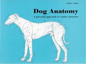WXICOF - Dog Books