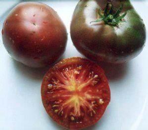 Tomate Noir De Crimée : tomate noire de crim e black krim les tomates une ~ Dailycaller-alerts.com Idées de Décoration