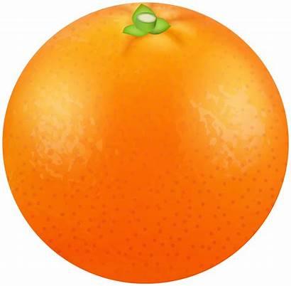 Orange Transparent Clipart Clipartpng Fruits Link