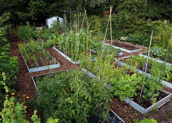 tuin smakelijk wroeten moestuin