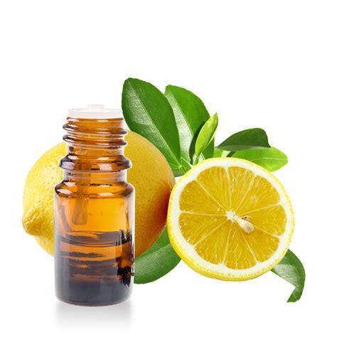 huile de citron cuisine huile essentielle de citronnier fiche d 39 informations