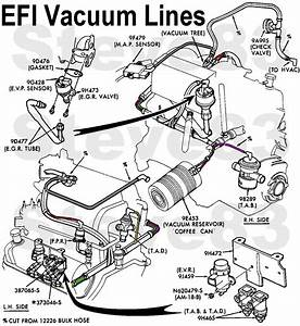 Ford F-150 Questions - Is There A Diagram For Vacuum Hoses On 1990 F150 Efi 5 0 Litre