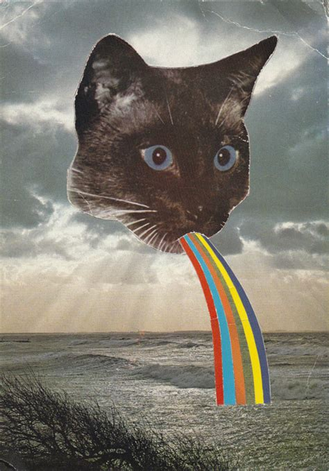 cat puking rainbow cat on