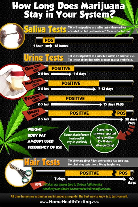 How Long Does Marijuana Stay In Your System?  Home Health