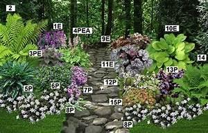 Plantes Vivaces Pour Massif : massif couvre sol mi ombre pr sentation d co ext ~ Premium-room.com Idées de Décoration