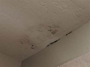 Checking in the hotel picture of staybridge suites for Is black mold on bathroom ceiling dangerous