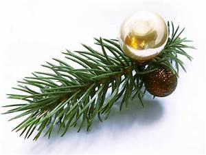 Große Weihnachtskugeln Für Außenbereich : kleine weihnachts haarspange mit kleinem tannenzweig und weihnachtskugel weihnachten haarschmuck ~ Whattoseeinmadrid.com Haus und Dekorationen