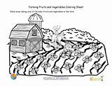 Coloring Farm Sheet Seeds Printable Vegetables Growing Scene Care Pages Taking Crops Fruit Worksheets Fruits Adult Colouring Sheets Farming Nourishinteractive sketch template