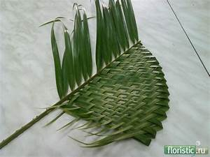 58 Best Leaf Manipulation Images On Pinterest