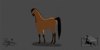 Spirit Cavallo Selvaggio Disegni Stallion Stefani Animation