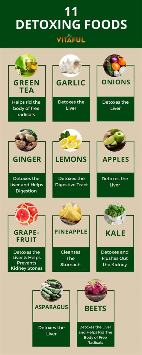 cuisine detox detox vs cleanse their differences and benefits