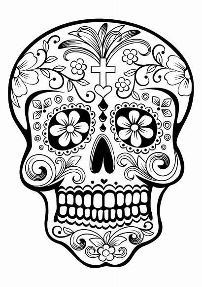 Muertos Dia Dead Skull Los Coloring Sugar