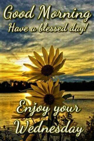 sunrise sunflower good morning enjoy  wednesday