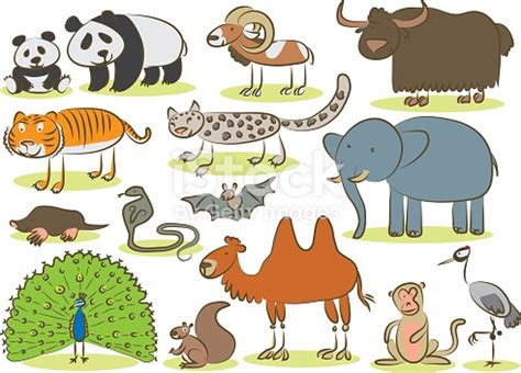 asian animals kids drawing stock vector art  images