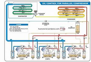 Oil Control For Parallel Compressor