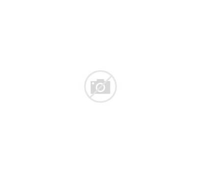 Singer Singing Transparent Voice Stars Choir Rising