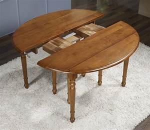 Table A Rallonge 20 Personnes : table ovale volets 135x110 en merisier de style louis philippe avec 7 allonges de 40 cm ~ Teatrodelosmanantiales.com Idées de Décoration