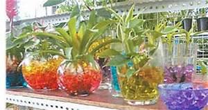 Grüne Kügelchen In Blumenerde : eine g nstige alternative mit vielen vorteilen ~ Lizthompson.info Haus und Dekorationen