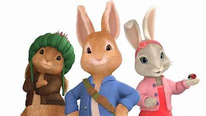 Rabbit Peter Clipart Cbeebies Toys Bbc Cake