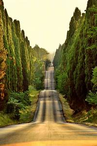 Tuscany, Italy: a collection of ideas to try about Travel ...