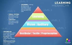 Learning Hierarchy: The Role of Sensory Systems
