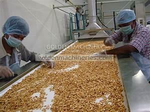 Professional Peanut Manual Sorting Belt In Peanut Sorting