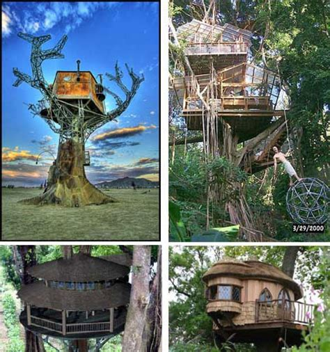 Eco Building Tree Houses For Recreation Work Space And