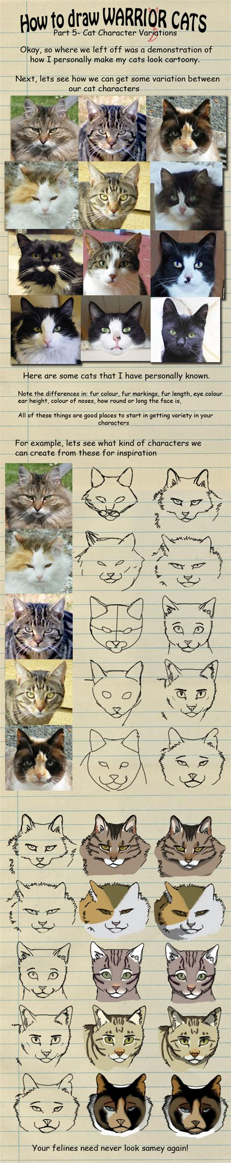warrior cat obsessed fan club images   draw  warrior