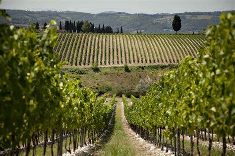 best wineries in chianti chianti rejoice here are the best antinori winery