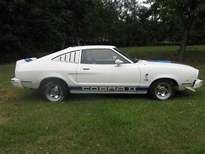 1976 Ford Mustang Cobra II for sale - Ford Mustang 1976 for sale in Sussex, New Jersey, United ...