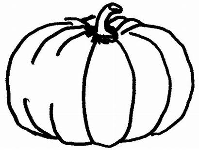 Pumpkin Coloring Drawing Citrouille Printable Coloriage Section