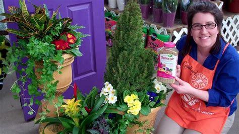 tukang taman sidoarjoobat obat tanaman hias