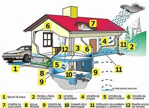Feuchtigkeit Im Haus : erkennen sie ein problem feuchtigkeit igrodry ~ Lizthompson.info Haus und Dekorationen