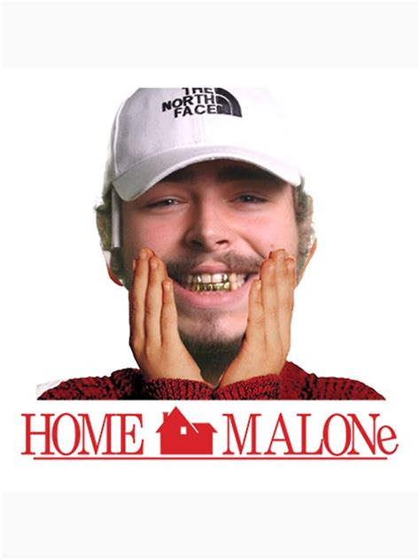 Post Meme - the 15 best post malone memes to have graced the internet