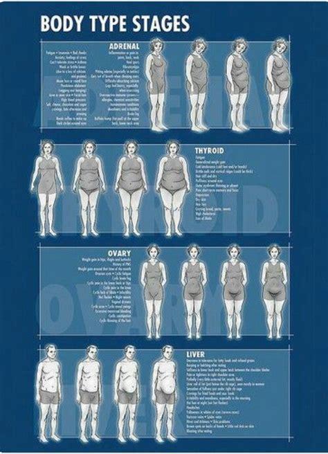 pin  weight loss tips  endomorph women body types