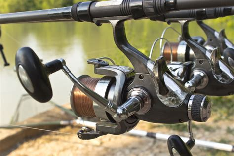 types  fishing reels  detail review