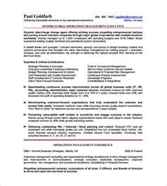 resume templates for ceo ceo resume template 11 free sles exles format