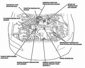 1998 Honda Civic Engine Diagram