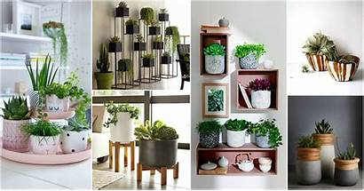 Indoor Planters Outstanding