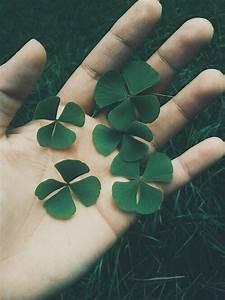four leaf clover on Tumblr