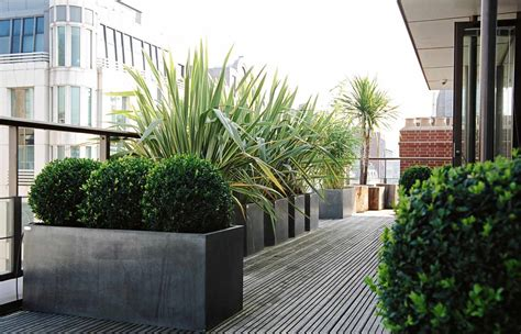rooftop planting roof garden design central london