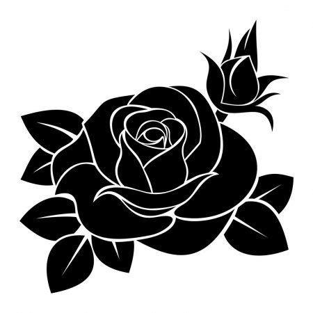 Rosa Vetores de Stock Ilustrações Vetoriais Free Rosa